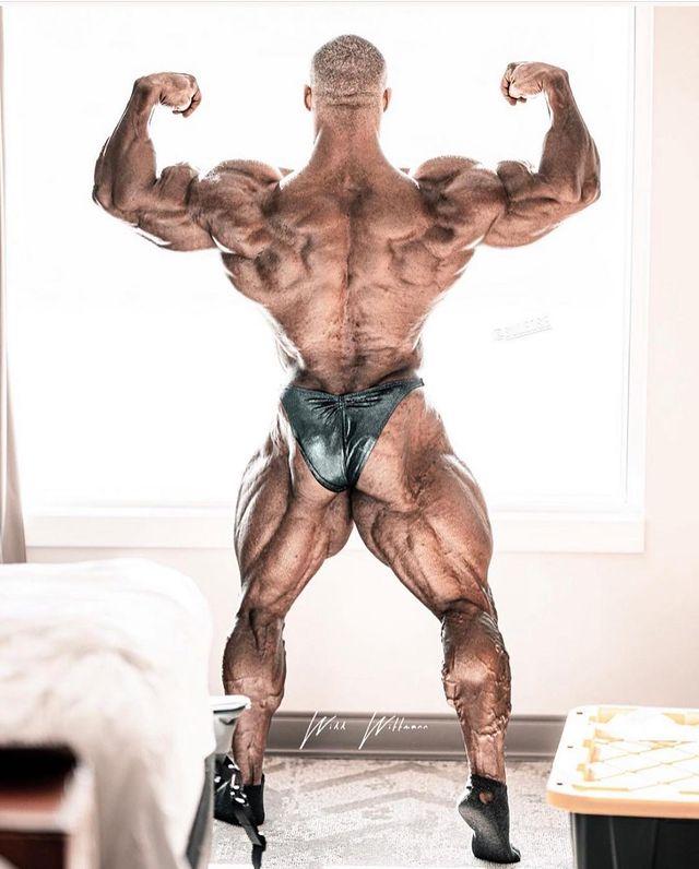 Nick walker espalda fitness